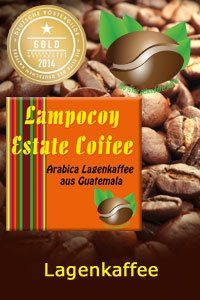 Lampocoy Real-Estate Arabica, 1.000 g