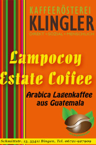 Guatemala Lampocoy Real-Estate